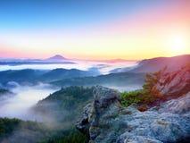 Mglisty budzić piękna czarodziejska dolina Szczyty skały nad śmietankowa mgła Obraz Royalty Free