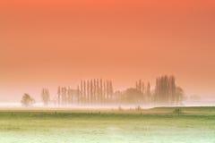 Mglisty Flandryjski tło Zdjęcia Royalty Free