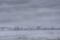 Mglisty holenderski zima krajobraz Obraz Royalty Free
