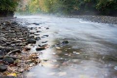 mglisty jesień strumień Obrazy Stock