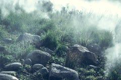 Mglisty las w Norwegia - straszny krajobraz obraz stock
