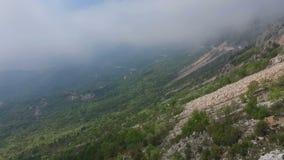 Mglisty las, widok z lotu ptaka latanie przez chmur zbiory