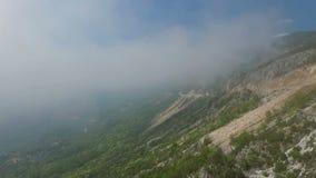 Mglisty las, widok z lotu ptaka latanie przez chmur zbiory wideo