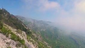 Mglisty las, widok z lotu ptaka latanie przez chmur zdjęcie wideo