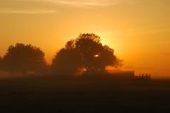 mglisty poranek wschód słońca Obraz Stock