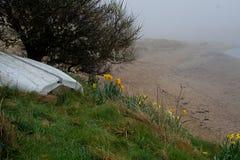 Mglisty ranek, Alnmouth plaża, Northumberland fotografia royalty free