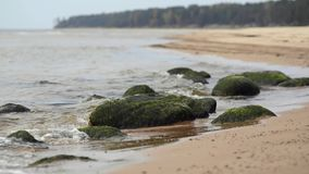 Mglisty ranek morzem z łamanie fala zbiory wideo