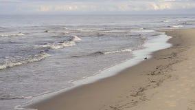 Mglisty ranek morzem z łamanie fala zdjęcie wideo