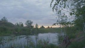 Mglisty ranek na bagnie przy półmrokiem w wiośnie Bagno przy półmrokiem zdjęcia stock