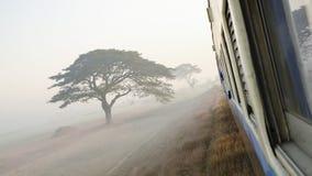 Mglisty ranek na pociągu Zdjęcie Royalty Free
