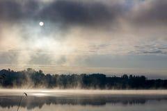 Mglisty ranek przy jeziorem Zdjęcia Stock