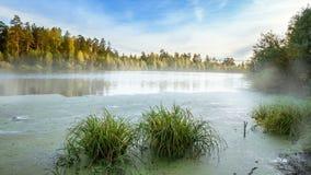 Mglisty ranek przy Ural rzeką las na bankach, Rosja obrazy stock