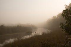 Mglisty ranek w dżungli rzece w Nepal Zdjęcia Stock