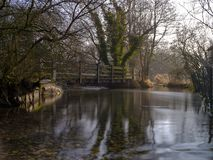 Mglisty ranku ?wiat?o na Rzecznym Meon blisko Exton, po?udnie Zestrzela parka narodowego, Hampshire, UK zdjęcie royalty free