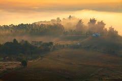Mglisty ranku wschód słońca w górze przy Khao-kho Phetchabun, Thailan Obrazy Stock