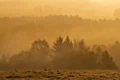mglisty wschód słońca Fotografia Royalty Free