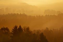 mglisty wschód słońca Zdjęcia Stock