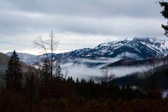 Mglistych wschodu słońca krajobrazu gór drzew Lasowych wzgórzy Dolinny ranek Spitzingsee Niemcy Zdjęcie Stock