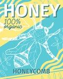 Miód Kreślił plakat z pszczołą ilustracji