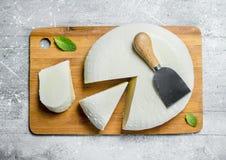 Miękki ser z nowymi liśćmi zdjęcia royalty free