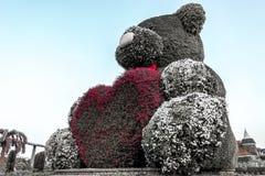 Miś z Różowym sercem, cudu ogród, Dubaj obrazy royalty free
