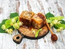 Miód grępla i lipowi kwiaty Zdjęcie Stock