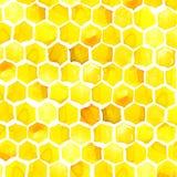Miód, honeycomb, akwarela Zdjęcia Royalty Free
