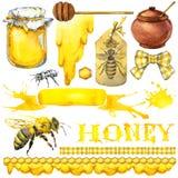 Miód, honeycomb, miodowa pszczoła Set dla projekt etykietki produktów od miodu beak dekoracyjnego latającego ilustracyjnego wizer Zdjęcie Stock