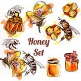 Miód kolekci lub setu elementów pszczoły w waterco grępla i miód ilustracji