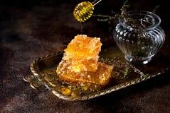Miód w honeycombs Fotografia Stock