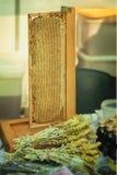 Miód w honeycombs, produkcja miód na gospodarstwo rolne rynku odpierającym dla zdrowej zielarskiej herbaty z antibacterial, antif zdjęcia royalty free