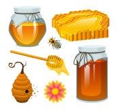 Miód w słoju, pszczoła, rój, łyżka, honeycomb, rój i pasieka, Naturalny produkt rolniczy beekeeping lub ogród zdrowy ilustracja wektor