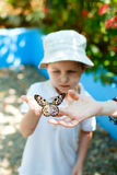 Miúdo com borboleta foto de stock royalty free