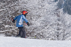 Miúdo do esqui Imagem de Stock Royalty Free