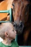 Miúdo e cavalo Fotografia de Stock Royalty Free