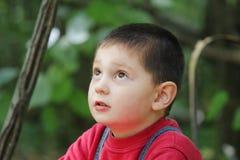 Miúdo na floresta que olha acima Imagens de Stock Royalty Free