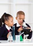 Miúdos da escola na classe da ciência Fotografia de Stock Royalty Free