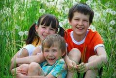 Miúdos de sorriso no campo gramíneo fotos de stock