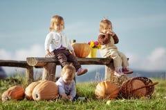 Miúdos do país Fotografia de Stock