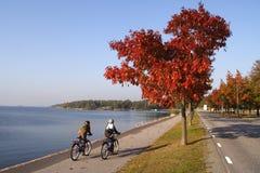 Miúdos em bicicletas Imagens de Stock