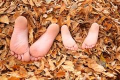 Miúdos enterrados nas folhas da queda Imagens de Stock