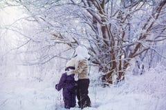 Miúdos no inverno Fotografia de Stock Royalty Free