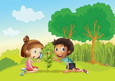 Miúdos no parque Fotos de Stock Royalty Free