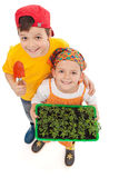 Miúdos que crescem seu próprio alimento fotografia de stock