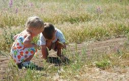 Miúdos que jogam no lado do país Imagem de Stock Royalty Free