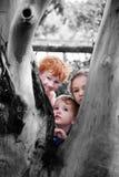Miúdos que olham em torno da árvore no jardim da natureza Imagens de Stock Royalty Free