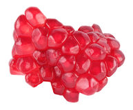 miąższowa granatowiec czerwień Zdjęcie Royalty Free