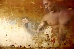 mięśnie, Zdjęcie Stock