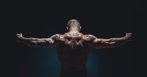 mięśniowa bodybuilder samiec Fotografia Stock