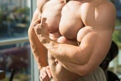 Mięśniowa półpostać i ręki obrazy stock